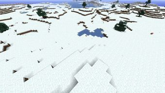 The Ice Plains biome (also referred to as the Tundra or the Snowy Plains) is a rare biome that...