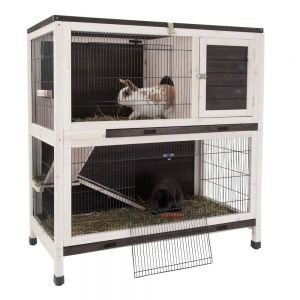 small pet cages indoor lounge guinea pig cage free. Black Bedroom Furniture Sets. Home Design Ideas