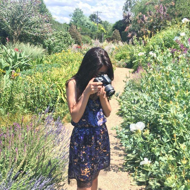 A day at Alowyn Garden