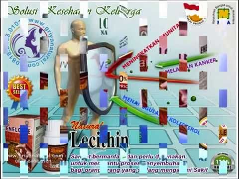 0818 0408 0101 (XL), daya tahan, antibodi, kekebalan tubuh, sistem imun, vitamin alami, pertahanan tubuh, imun tubuh, penyakit imun, imunitas tubuh, ketahanan tubuh,