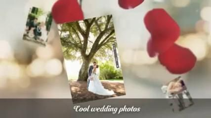 Wedding picture galleries - Video Dailymotion