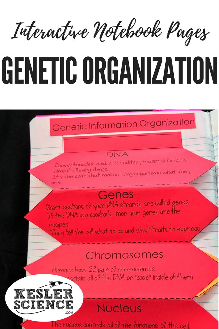 Genetics Books for College,University Students Book,Genes ...