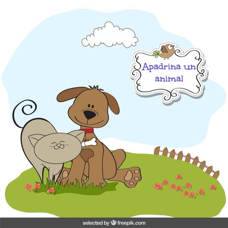Ms de 25 ideas increbles sobre Animais abandonados en Pinterest