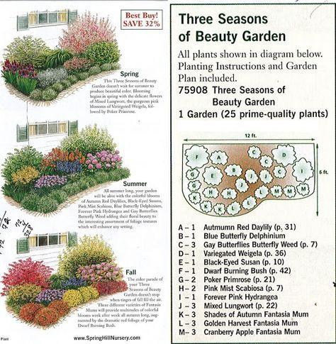 GARDENING: Garden plan a week, Week 2, Three Seasons of Beauty – Christy Chatman