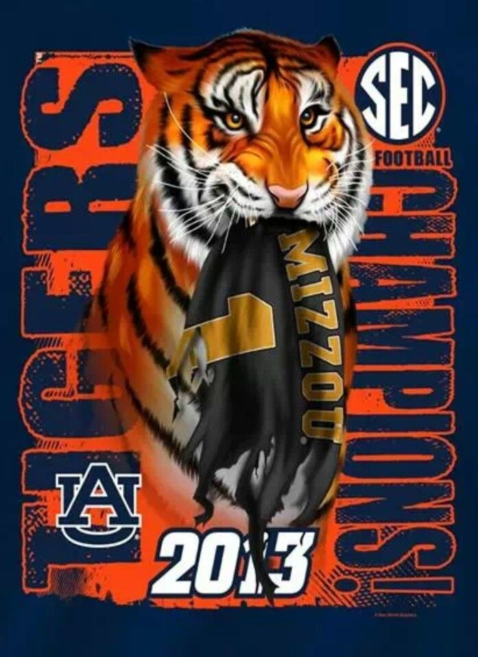 2013 SEC Champions ~ Auburn Tigers