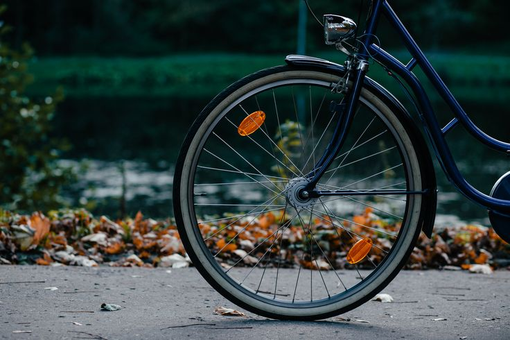https://flic.kr/p/NkcMf1 | Bike's wheel | Get more free photos on freestocks.org
