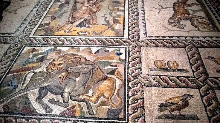 Tutti al Mar.Ta. il museo di #Taranto più famoso al mondo > http://www.madeintaranto.org/museo-taranto-per-ammirare-i-mosaici-terme-ville-patrizie/