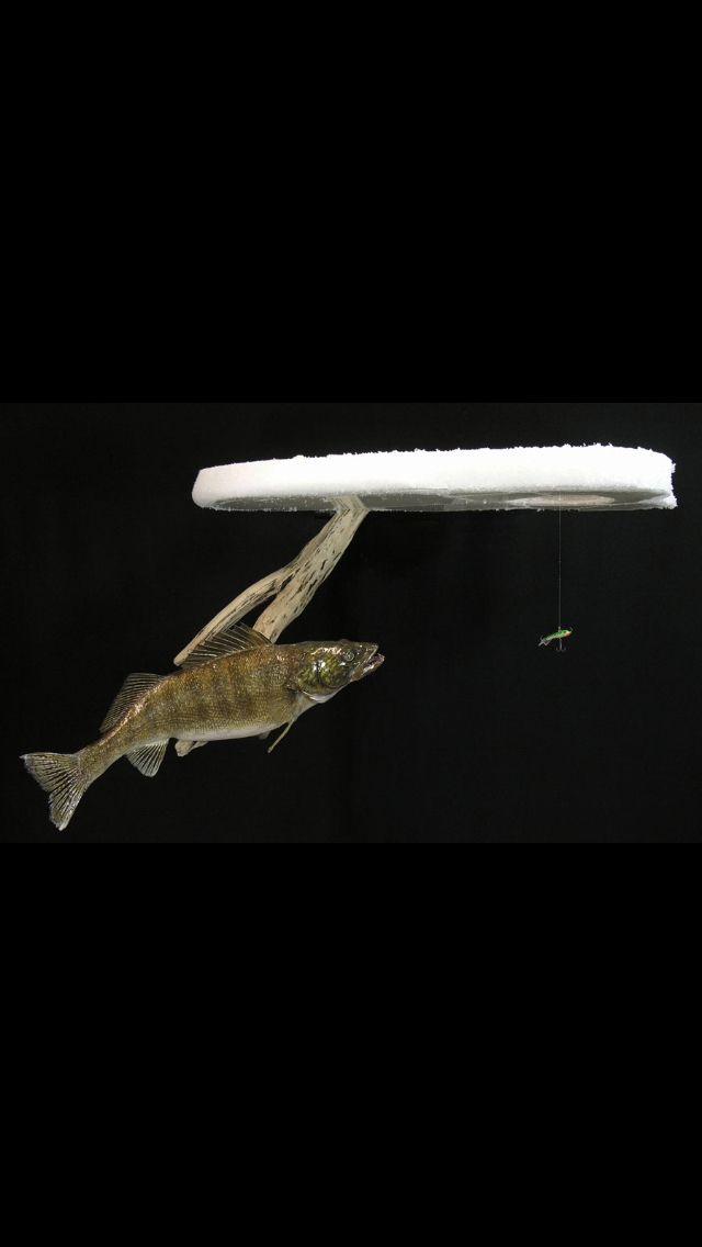 Best 25 ice fishing walleye ideas on pinterest ice for Barometric pressure fishing cheat sheet