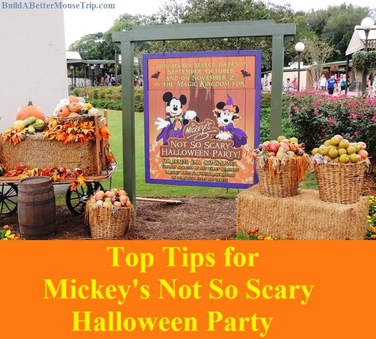 Tips for Mickey's Not So Scary Halloween Party in the Magic Kingdom at Walt Disney World Resort - see: http://www.squidoo.com/Mickeys-Not-So-Scary-Halloween-Party-Tips #passporter