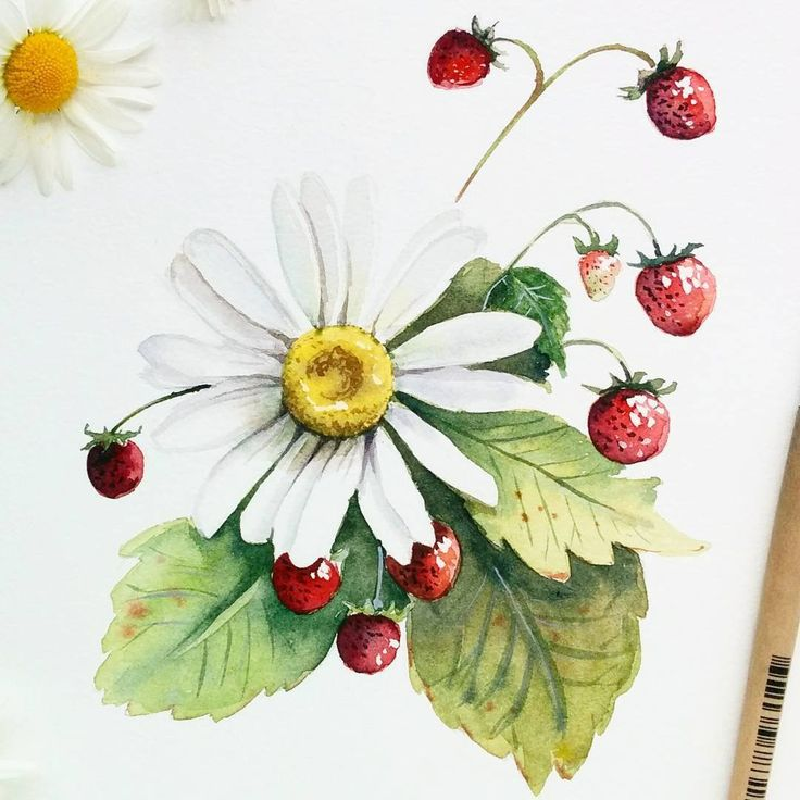"3,727 Likes, 8 Comments -  Watercolor blog (@watercolor.blog) on Instagram: "" Watercolorist: @prosvetkina_yana  #waterblog #акварель #aquarelle #drawing #art #artist #artwork…"""
