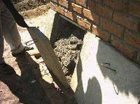 O  tratamento por compostagem e a sua utilização na higienização de  material fecal mostrou-se adequado quando bem manej...