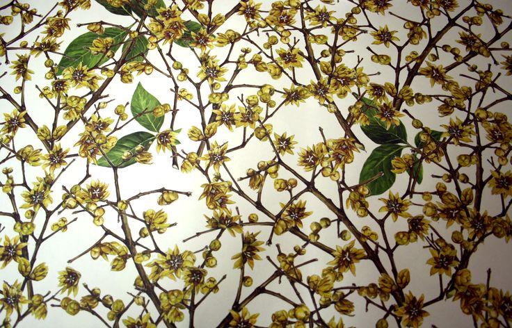 ¡Ya es primavera! Muchos papeles floridos de Graphiche Tassotti para encuadernación, scrapbooking, forrar, envolver... #Zoográfico #primavera #Papelesbonitos #GraphicheTassotti #encuadernación #scrapbooking #DIY #Paperart