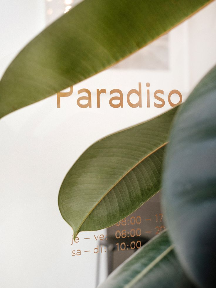 I was immediately drawn to the cafe when it opened (less than a year ago), I mean, really, who can resist a good mid century modern vibe and a pure white color palette? They were even featured on Archdaily a little while back, and with reason! Cafe Paradiso Geneva.