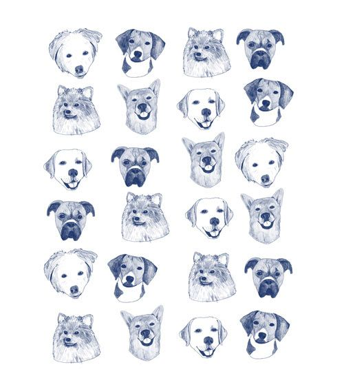 collection-of-joy by Hanna Melin: Dog Prints, Call Collection, Hanna Melin, Joy, Illustration, Dogs Art, Art Prints, Dogs Prints, Dogs Faces