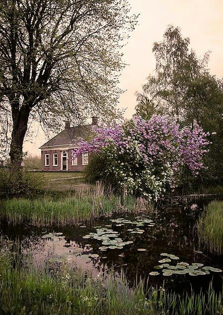 Groningen, Netherlands / Posed by. Art,Craft & Architecture