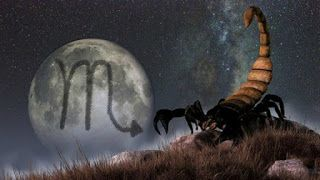 Kodused lood: Kui te tunnete Skorpioni tähemärgi all sündinud in...
