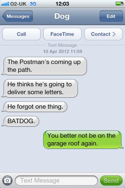 BATDOG!!Funny Texts,  Internet Site, Laugh,  Website, Web Site, Batdog, Funny Stuff, Dogs Texts, Humor
