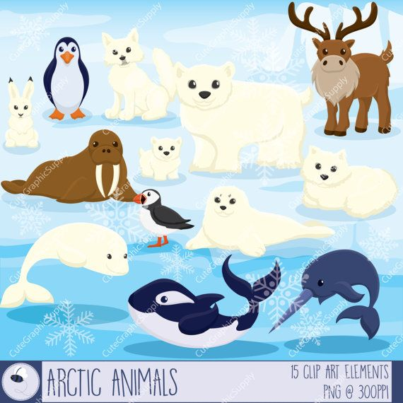 Arctic animals clipart, winter clipart, animal clipart, arctic animal clip art, pet clip art, arctic clipart, north pole -LN088-