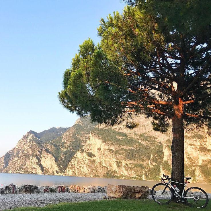 Kto rano wstaje i idzie na rower ten widzi zupełnie inny świat niż reszta turystów która wstanie za jakieś 2-3 godziny  #psc #paniswojegoczasu #budynienawakacjach #budyniewypoczywaja #wakacje #holidays #lagodigarda #italy #wlochy #włochy #urlop