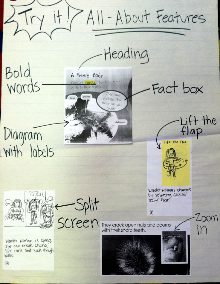 feature writing activities Find and save ideas about nonfiction activities on pinterest   see more ideas about fiction vs nonfiction, free comic book reader and nonfiction text features.