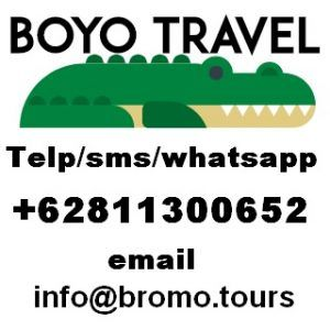 Bromo Tours