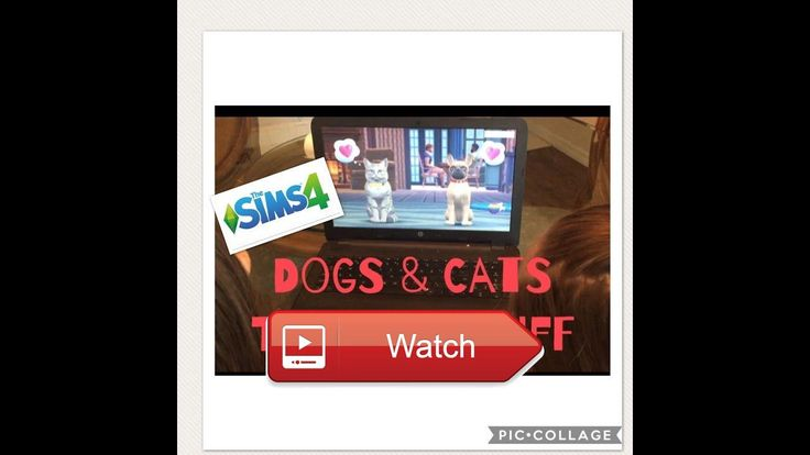 TWINS REACT TO SIMS PETS CATS AND DOGS TODDLER STUFF  We are so excited for these new packs  on Pet Lovers