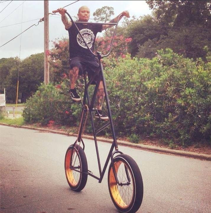 1000 Images About Mutant Bikes Amp Trikes On Pinterest
