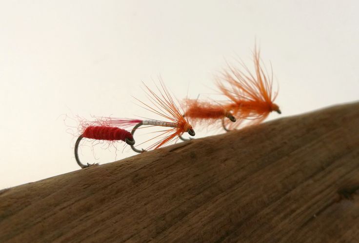 Garfish flies - A yarn fly (essentially a red Killer Bug), the BHD Garfish fly, Doh! and a small orange Chllimps