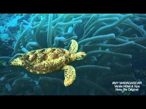 Madagascar: Film Hôtel Vanila & Spa - Nosy Be Original