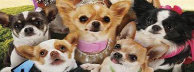April fools) KHV's Top 10 Most Wanted KH3 Disney Worlds | KH-Vids ...