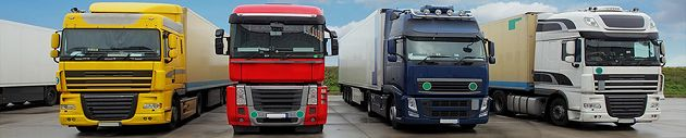 Auto Shipping Group is the leading service provider of enclosed car transport in the US.