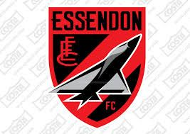 Image result for essendon bombers icon 2016