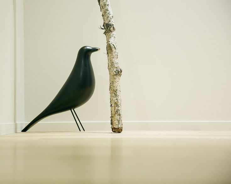 原田 マハさん 『旅する小説家のこだわりが詰まった、森の中の邸宅』 Maha Harada LIFECYCLING -IDEE-
