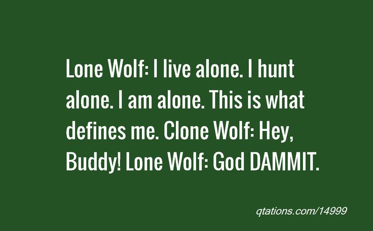 Lone Wolf Hangover Movie Quotes. QuotesGram