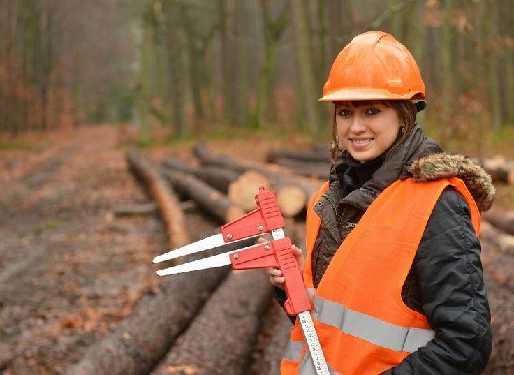 Abattage manuel et sécuritaire des arbres - Certification CSST