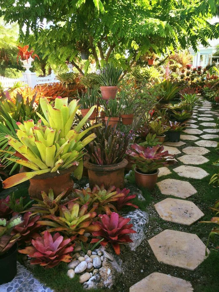 59 best Garden Edges Paths images on Pinterest Landscaping
