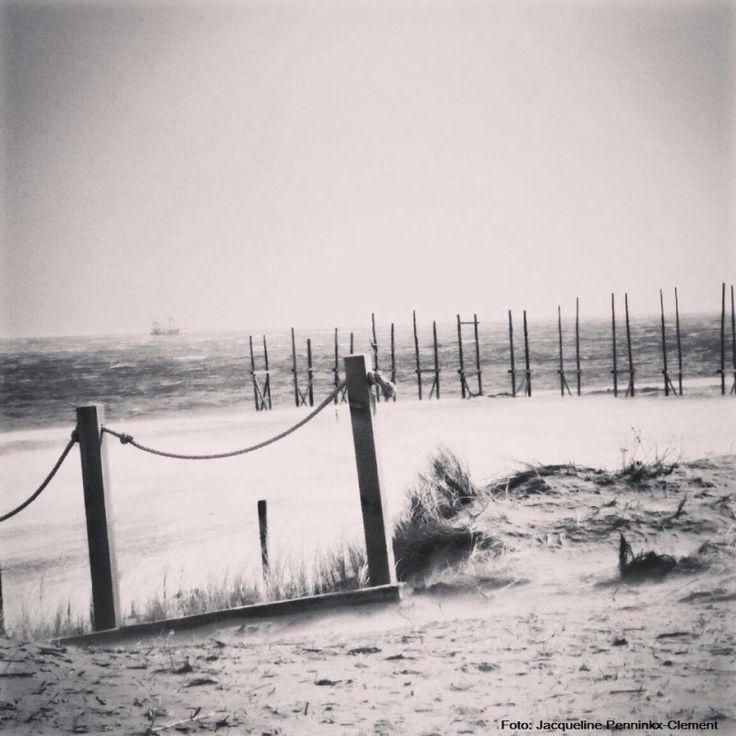 Meer dan 1000 idee n over leven op het eiland op pinterest clearwater beach bora bora en stranden - Ruimte tegel te leven ...