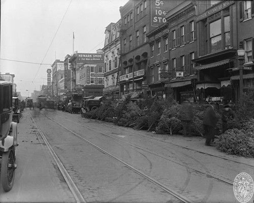 221 Best BALTIMORE! Images On Pinterest Baltimore Maryland And  - Baltimore City Christmas Tree Pickup