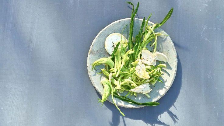 Puntarelle, eine italienische Salat-Spezialität, sind bei uns noch ziemlich unbekannt. Zu Unrecht: Sie verfügen über eine geschmackliche Besonderheit, die den meisten Zutaten in unserer Küche fehlt.