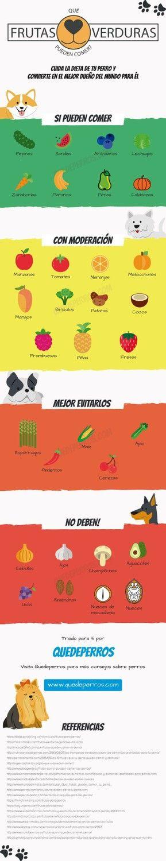 ¡Atentos a esta infografía! De un vistazo podéis saber qué frutas y verduras pueden comer vuestros perros ;)