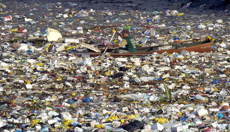 Something to remember every time we don't use a reusable grocery bag or buy those single serving water bottles...Great Pacific Garbage Patch