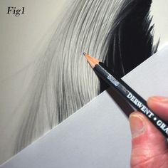Graham Bradshaw gives top tips on drawing hair