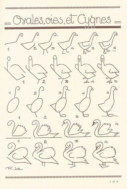 Les 386 meilleures images du tableau dessin sur pinterest - Dessiner une oie ...