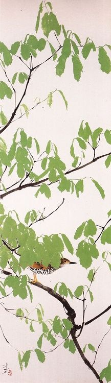 'White's Thrush In Green Leaves' (新緑虎鶇), artist Tanaka Isson (田中一村; 1908~1977)