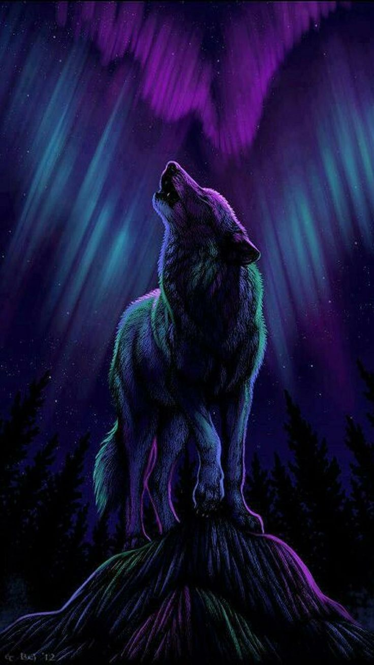 Wolf Illustration Anime White Wolves Art The Drawings Beautiful Marcel Pets