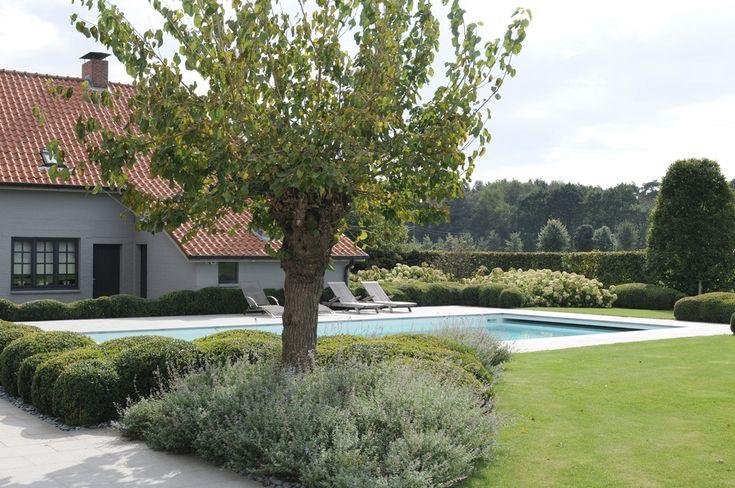 Landelijke tuin met zwembad op het platteland - Avantgarden