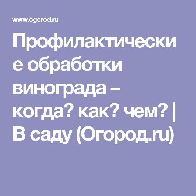 Профилактические обработки винограда – когда? как? чем? | В саду (Огород.ru)