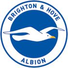 watch a footy match - Brighton & Hove Albion Football Club