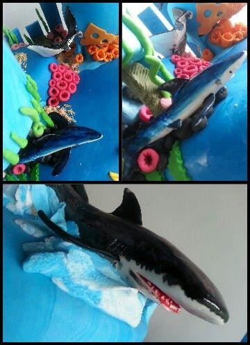 Shark cake - YumJoy creations