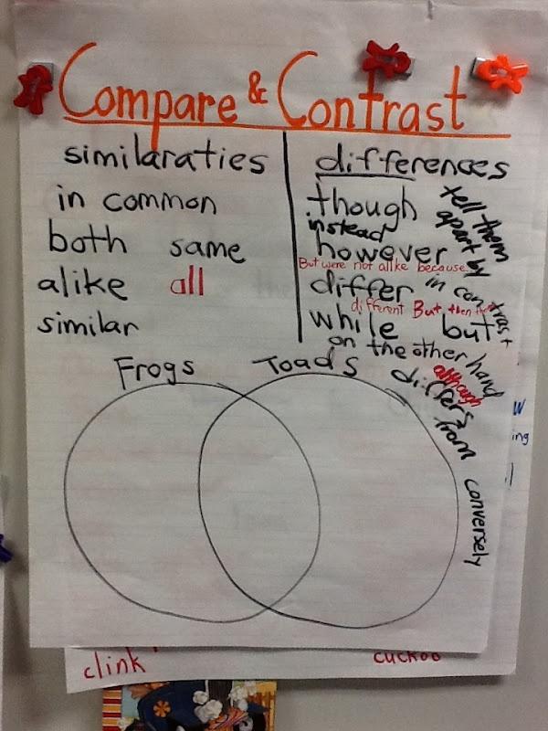 compare contrast essay love infatuation